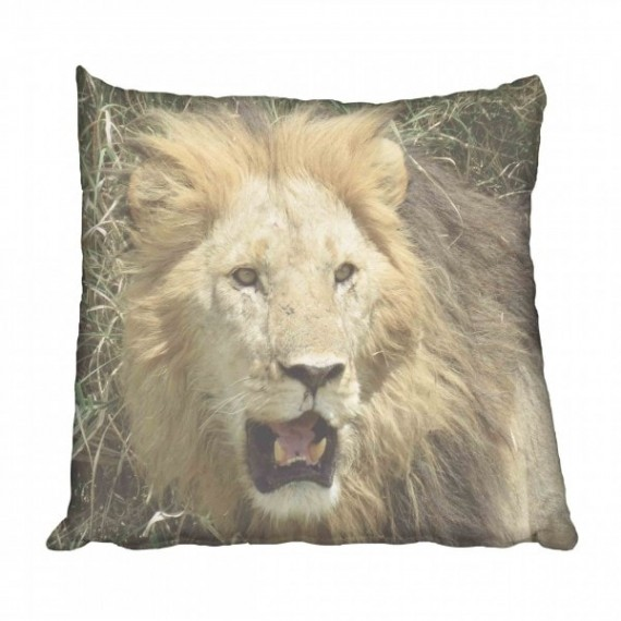 African Lion Scatter Cushion