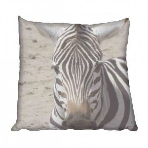 African Zebra Scatter Cushion
