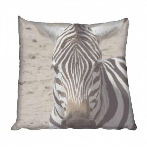 African Zebra Scatter Cushion